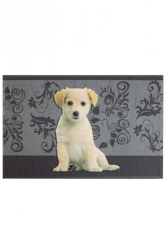 Akzente Fußmatte - Kleiner Hund - der Hit für Hundefreunde.... für Ihren Eingang für Innen und Außen
